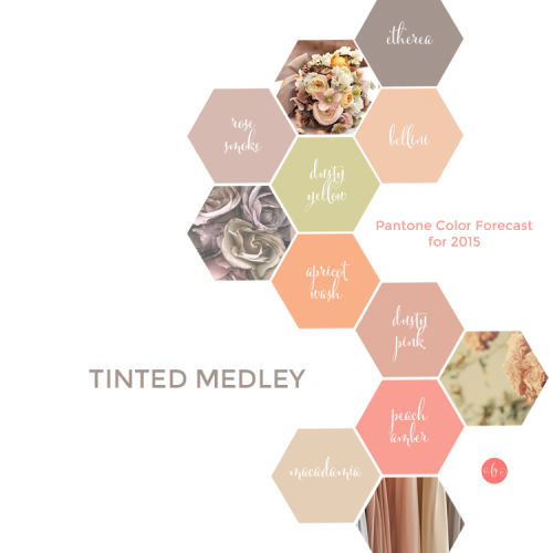 Pantone Forecast For 2015 – Tinted Medley