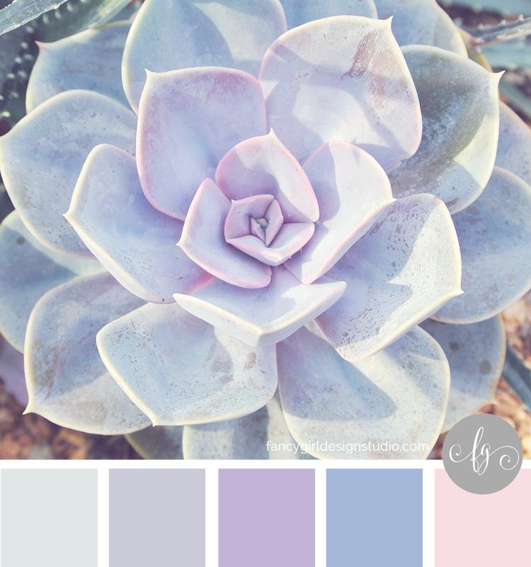 palesucculent