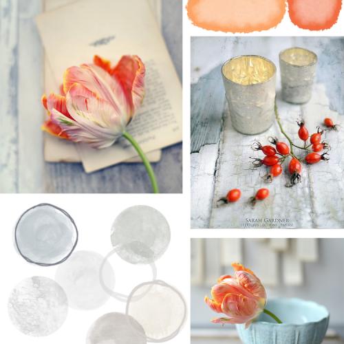 Tulip Tones Inspired By Sarah Gardner Photography