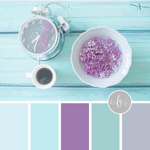 Color Crush: Lilac + Aqua