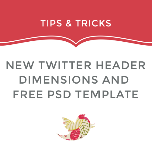 New Twitter Header PSD Template