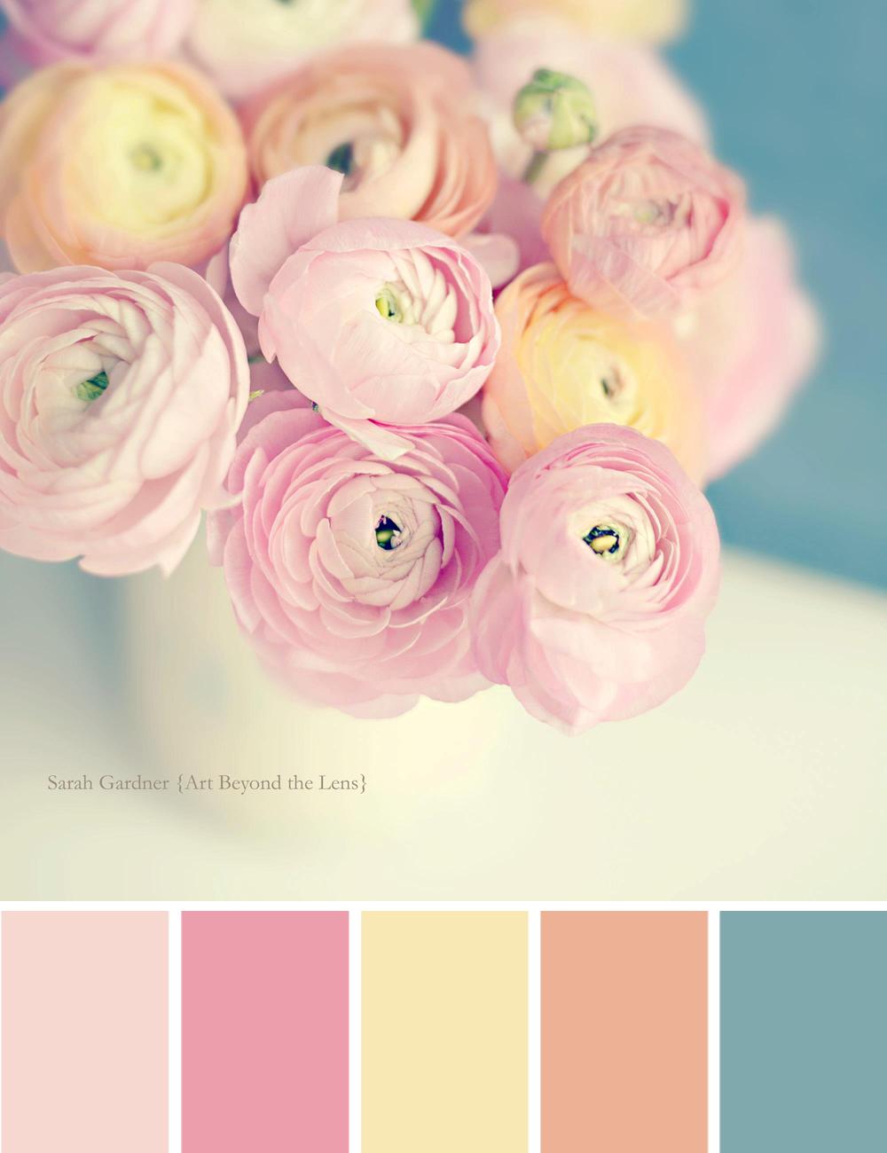 Colour Palette: Ranunculus Pastels