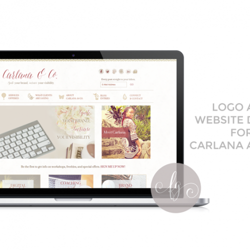 Featured Project: Carlana and Co