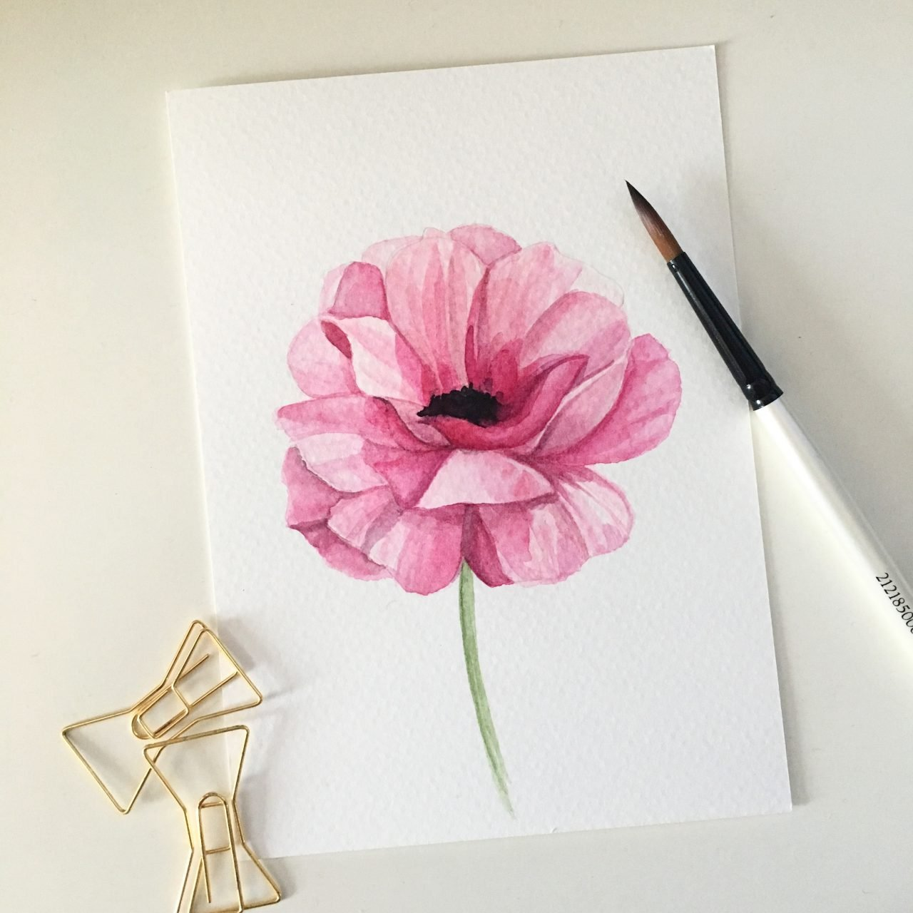 peony practice in watercolor, by patricia alix