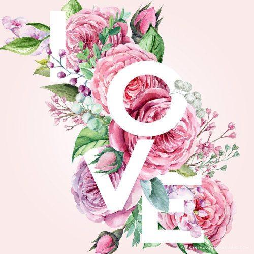 Love: a freebie